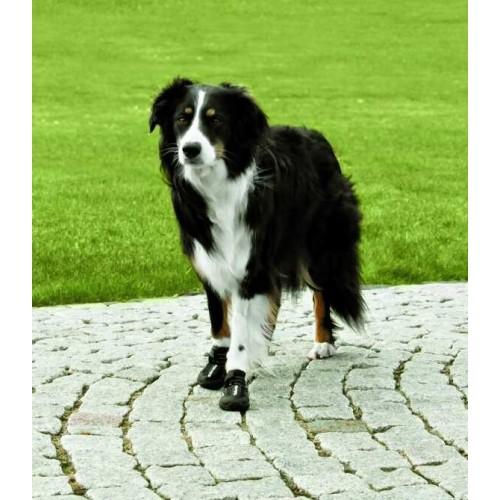 Botas de Proteção WALKER ACTIVE