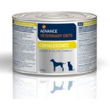 Advance CONVALESCENCE Canine/Feline