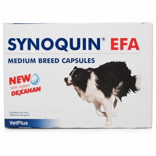 Synoquin EFA Medium Breed