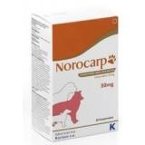 Norocarp 25 tablets