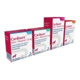 Cardisure Flavor 100 tablets