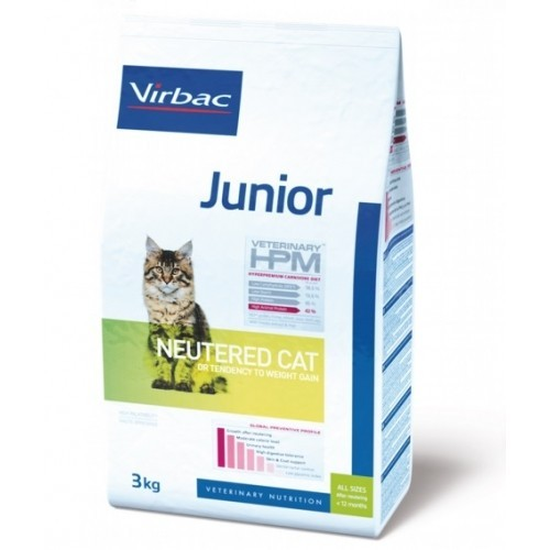 Junior Neutered Cat