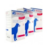 Orozyme enzymatic toothpaste strips
