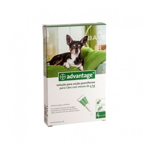 Advantage 40 Cão