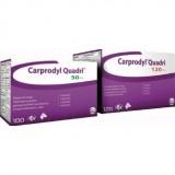 Carprodyl 100 Comprimidos