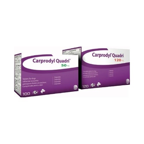 Carprodyl 100 tablets
