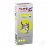 Bravecto Plus gatos pequenos