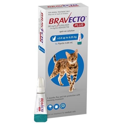Bravecto Plus medium cats