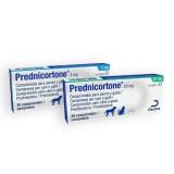 Prednicortone tablets